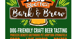 Bark & Brew at Macadoodles benefitting Greyhound Pet Adoption - Springfield!