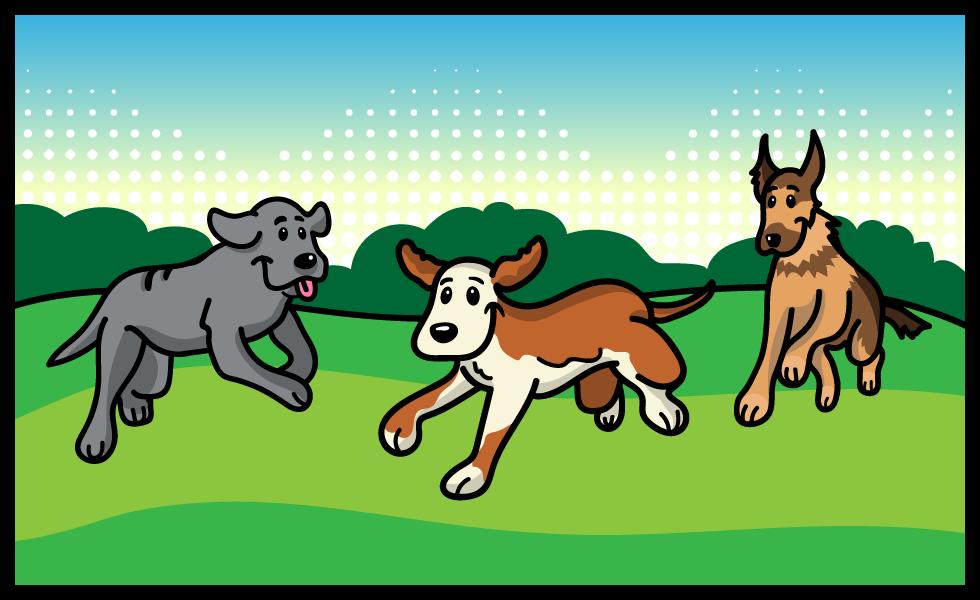 Doggy Adventure