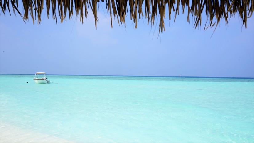 モルディブのサンドバンクでは透き通るような水色をお目にかかれる