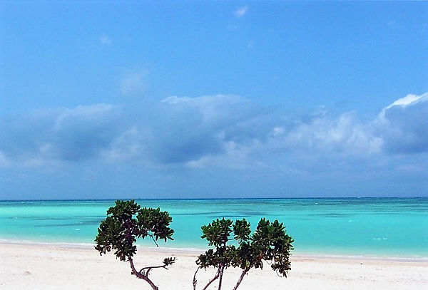 風情がスキなあなたは、竹富島でコンドイビーチと沖縄集落を同時に楽しんで♪