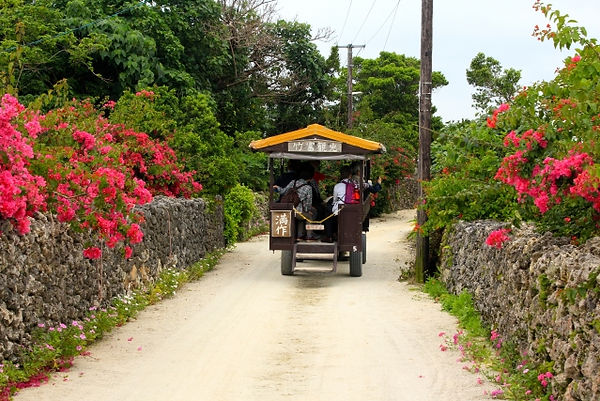 沖縄への弾丸旅行!おすすめビーチや観光地を教えて!