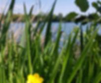 zomergewoontes_voor_een_lekker_licht_gev