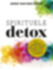 Spirituele Detox Jesse van der Velde Vro