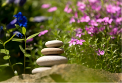 Relax rebalance.png