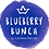 Thumbnail: Website for Blueberry Bunch