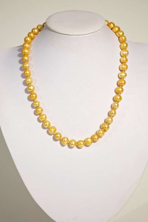 445 Yellow pearls