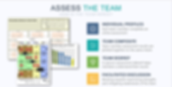 Team - Assess the Team.png