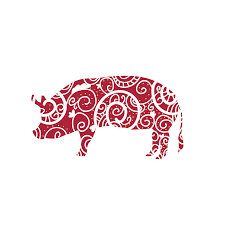 The Energies of This Year – The Year of The Pig