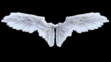 angel-4870052_1920_edited.png
