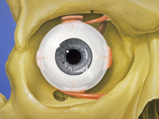 Ácido Hialurónico: La nueva tendencia para eliminar Ojeras