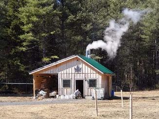 sugarhouse-with-steam.jpg