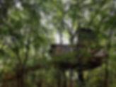 treehouse-rental.jpg