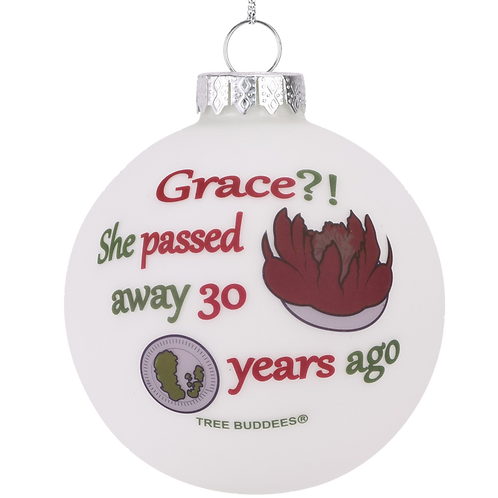 Grace?! She Passed Away 30 Years Ago Glass Christmas Ornament