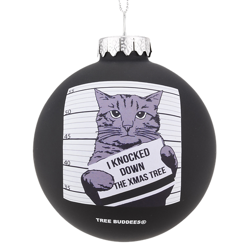Cat Mugshot Glass Christmas Ornament