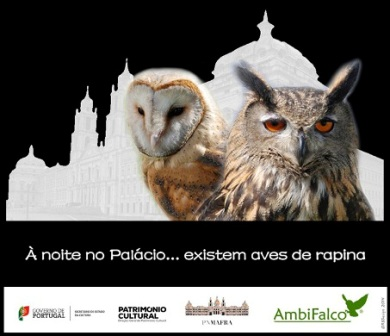 JAN.15 | À noite no Palácio...