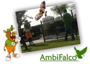 A Ambifalco e o Bolota vão à escola