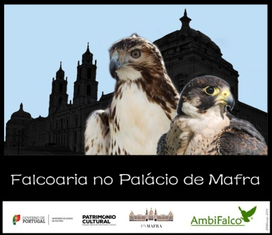 JAN.15 | Falcoaria no Palácio Mafra