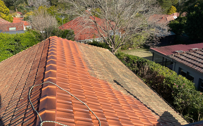 Terracotta Roof Cleaning