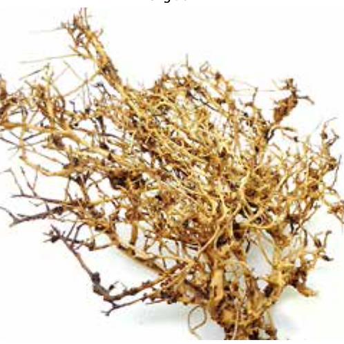Meijing   Tiny Ramous Wood 3kg BOX