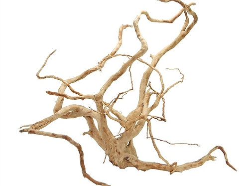 Spider Wood SMALL (20-30cm)