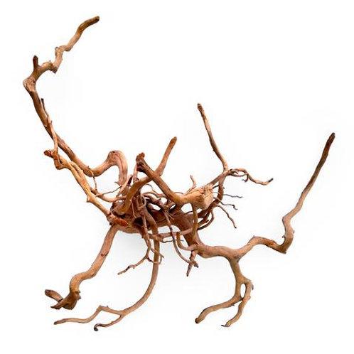 Spider Wood LARGE (40-50cm)