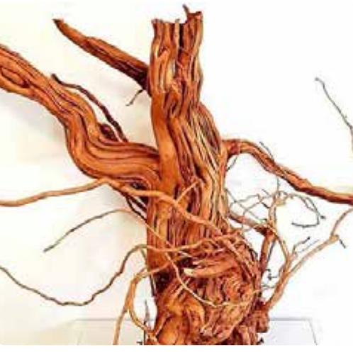 Meijing Azalea Wood-S Shape LARGE 60-100cm
