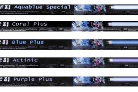 ATI 54w Blue Plus