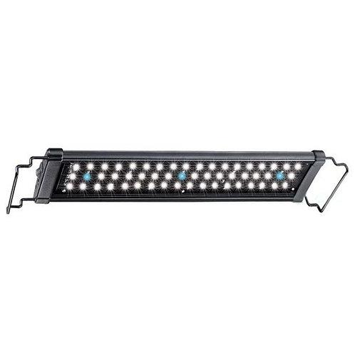 LED Hi Lumen 50