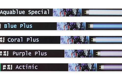ATI 24w Aquablue Special