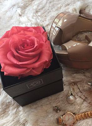 rosebox-negra-rosa-preservada-birdrose.j