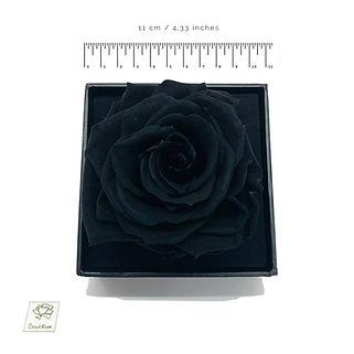 black preserved rose
