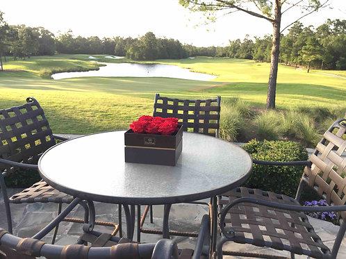 Luxury Collection - 9 XL bloom Rosebox