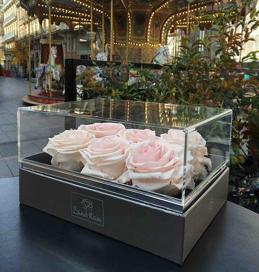 rosebox pink