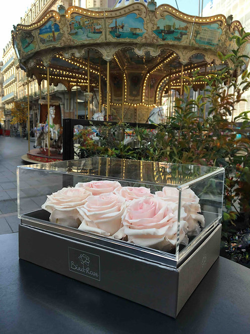 Collection Cristal - Flower box - 6 roses