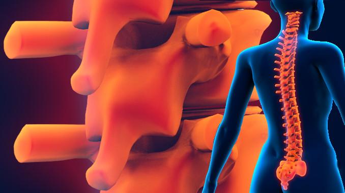 Rican Vegan Spinal Health