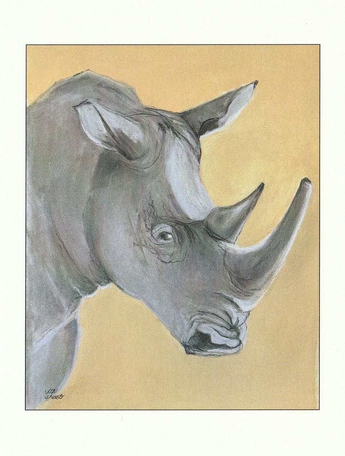 """The Big Five""-Rhinoceros"