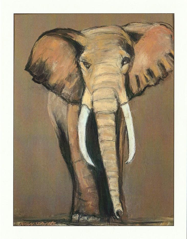 """""""The Big Five""""-Elephant"""