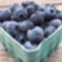 Blueberries, Port Townsend