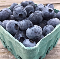 Blueberries, Port Townsend