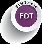 MCM Fintech Project FDT