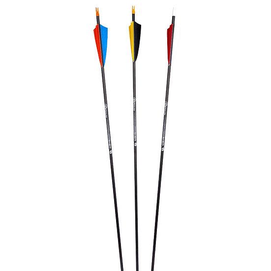 Penthalon Bandit Arrows