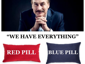 """""""We Have Everything"""" ~Mike Lindell & Q - Cyber Symposium #WWG1WGA"""