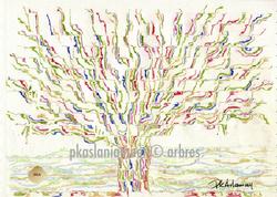arbre12