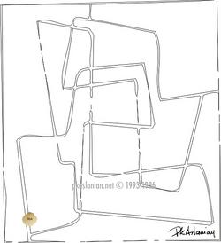 Graphique 13