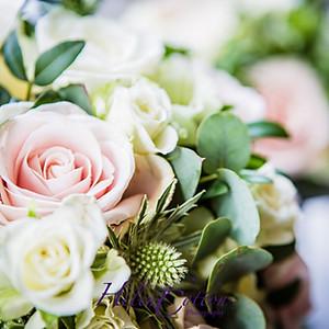 Stephanie & Alex's Wedding