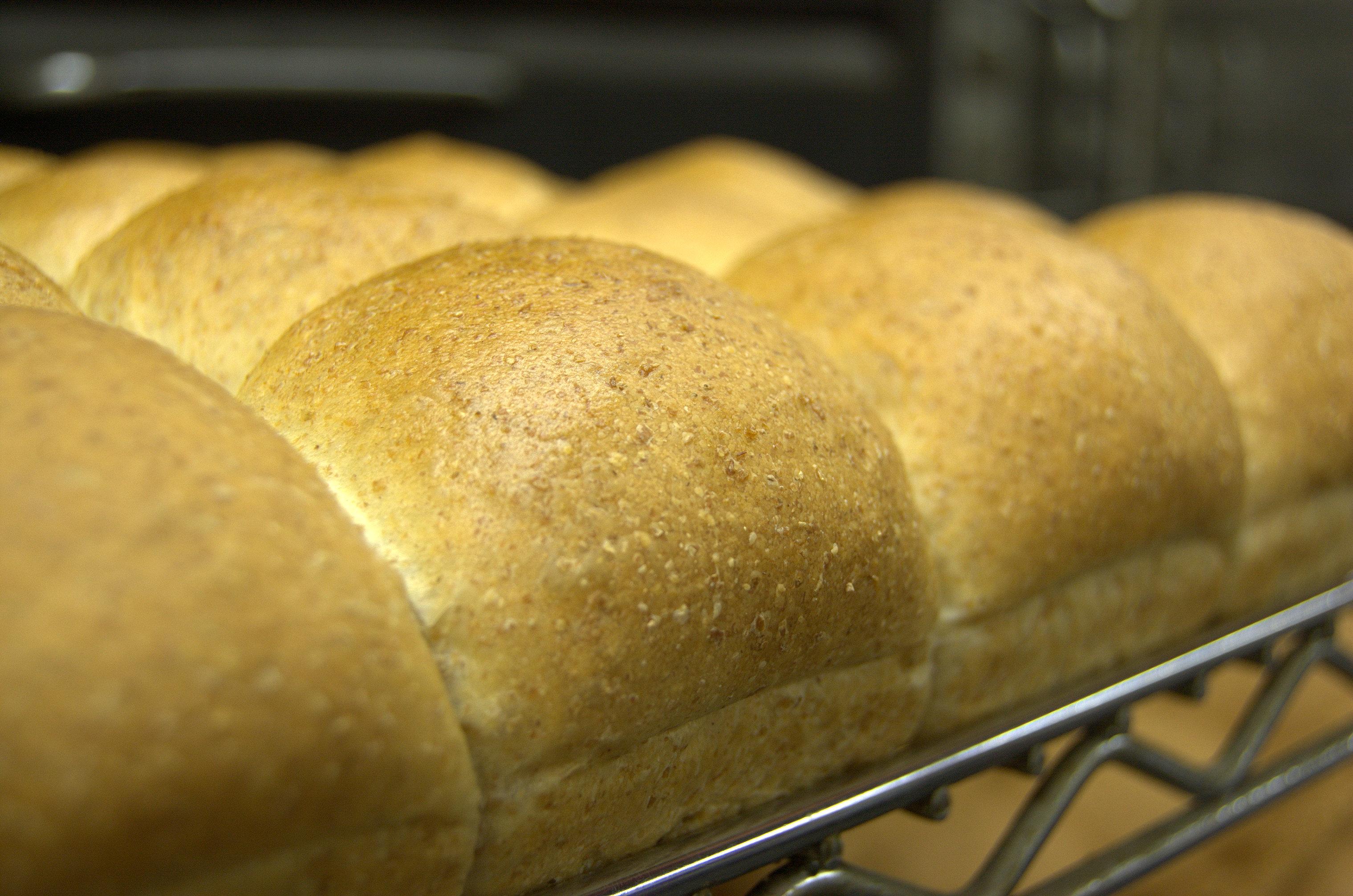 Whole Wheat Pan Rolls