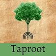 Taproot (1).jpg