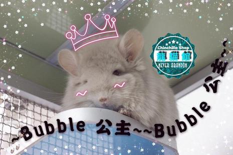Bubble小公主