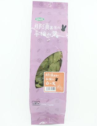 日本Kawai天然手採桑葉