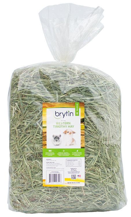 Brytin 1st Cutting Western Timothy Hay
